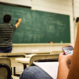 Sinn – Bildung – sollten Schulen mehr davon haben?